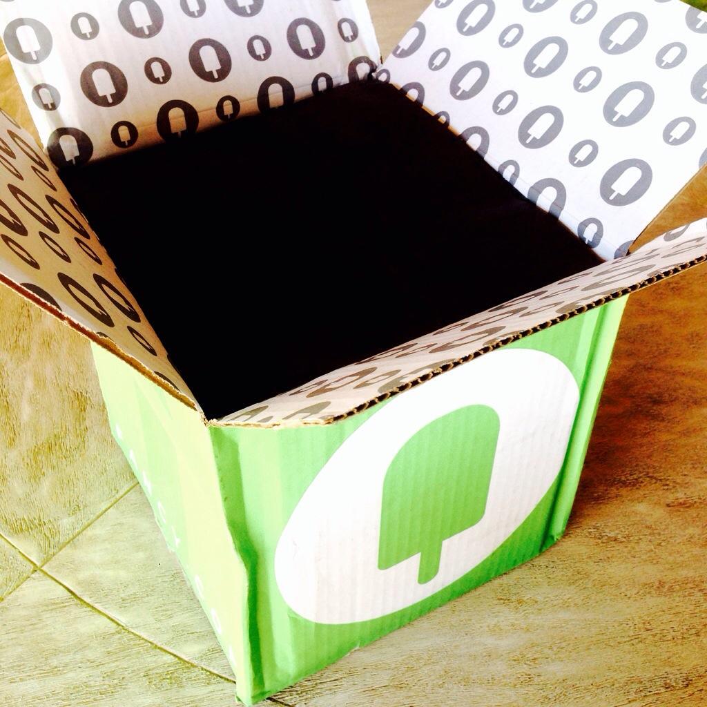 Nicky Hilton Fancy Box Review - July 2014