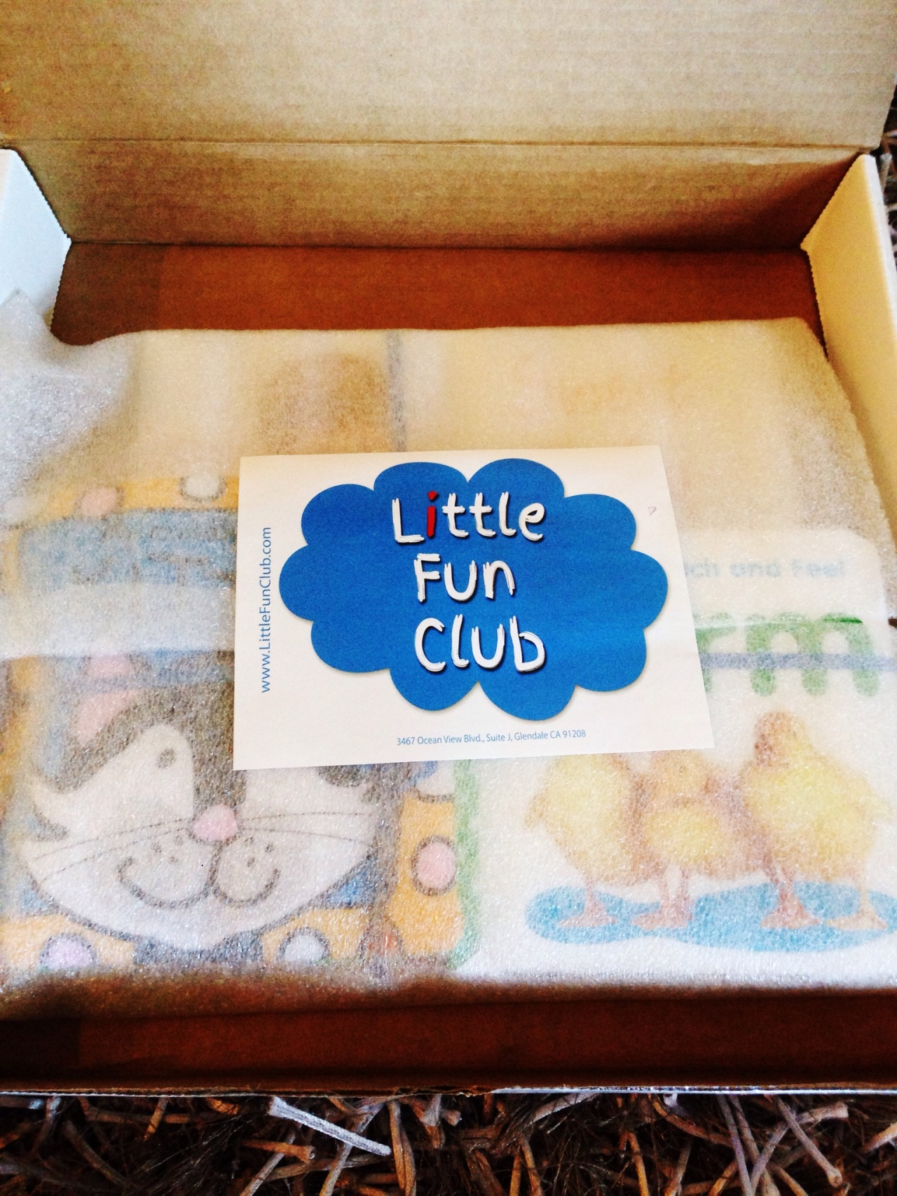 Little Fun Club Review - 11 mo - September 2014
