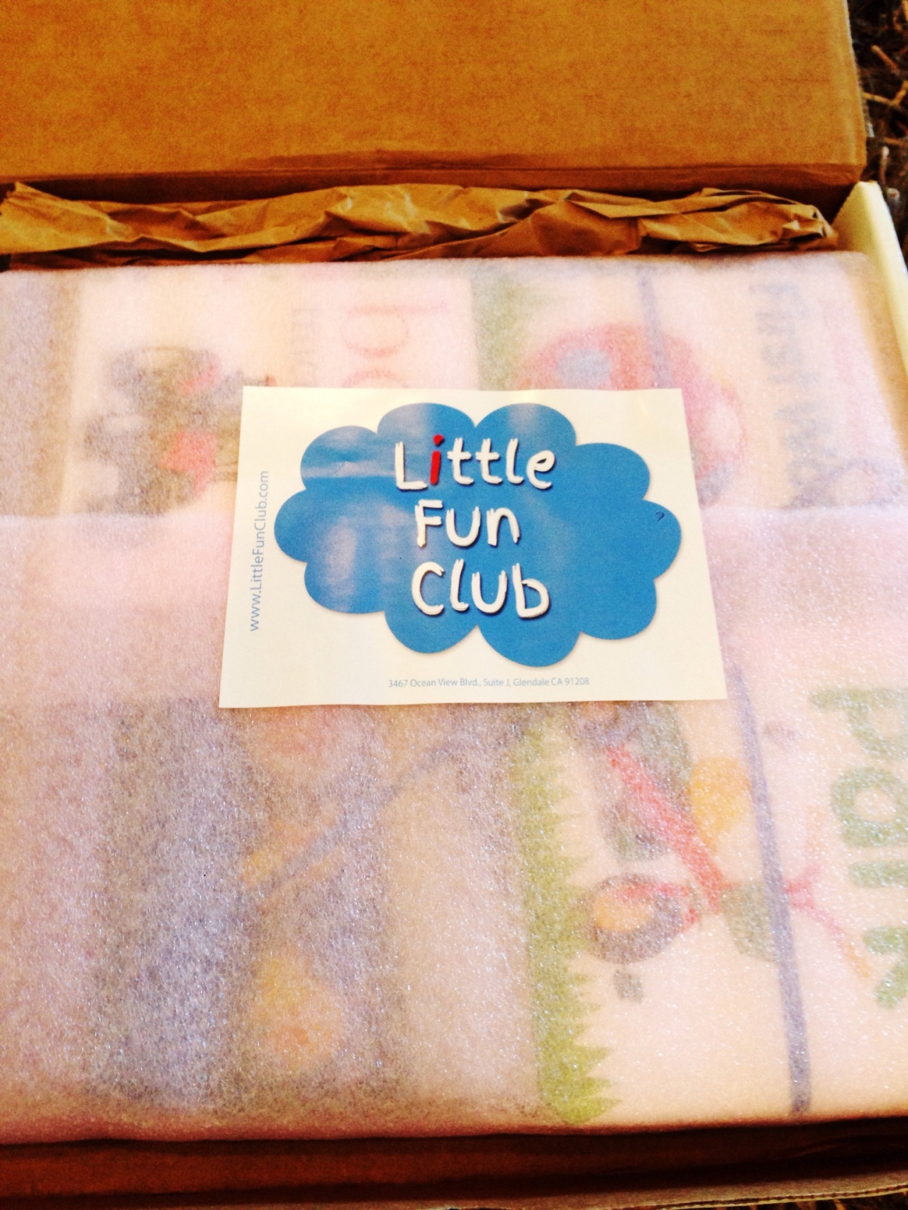 Little Fun Club Review - 10 mo - August 2014